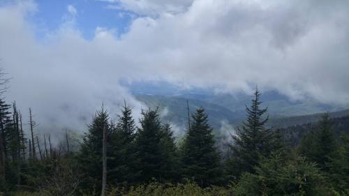 Picture taken from Clingmans Dome in the Great Smoky Mountains National Park. Taken after a hike with buddies in May of 2016.