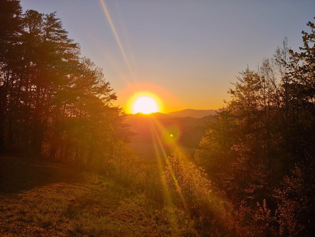 SunriseFHP